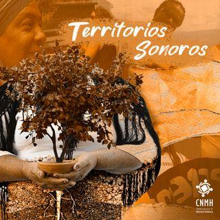 29 Territorios Sonoros - Vamo' A Sembrar: Lideresas Sociales y Memoria Histórica en Colombia