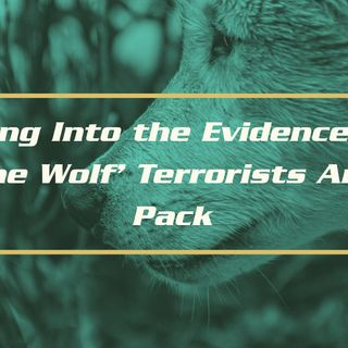 Looking Into the Evidence That 'Lone Wolf' Terrorists Are a Pack