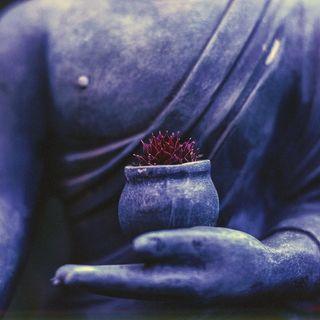 Meditazione sul perdono