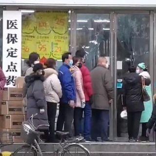 L'Oms a Wuhan: 10 super esperti nella città origine del virus