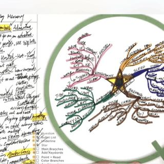 Darius Namdaran Founder Mind Mapping Bullet Map Academy