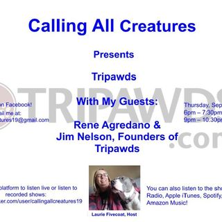 Calling All Creatures Presents Tripawds