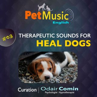 #03 Therapeutic Sounds for Healing Dogs | PetMusic