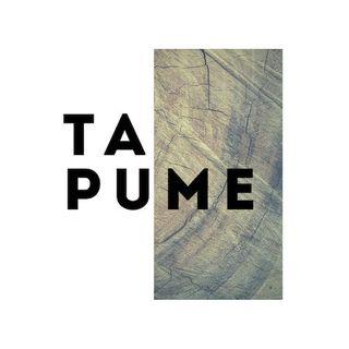 Tapume - Arte & Cultura