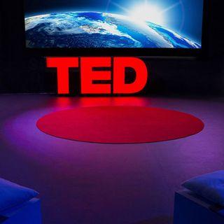 In che cosa consiste l'iniziativa Countdown del TED?
