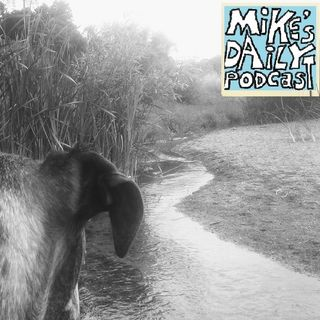 MikesDailyPodcast2271Interrupt