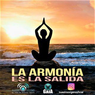 NUESTRO OXÍGENO La Armonía es la salida