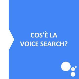 Voice Search: un esempio di risposta vocale di Google Home