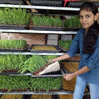प्रिया बोडके - शेतीकडे उद्योग म्हणून बघा, ओझं म्हणून नको!!
