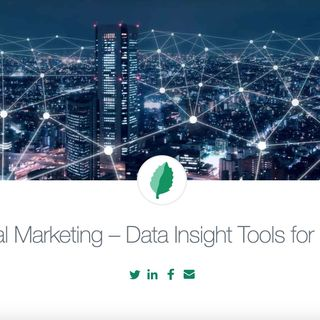 Digital Marketing Strategy 2020 - Free Digital Audit & Recommendations Reports by MINT Social