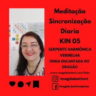 Meditação Sincronização Diária - kin 05 - SERPENTE HARMÔNICA VERMELHA