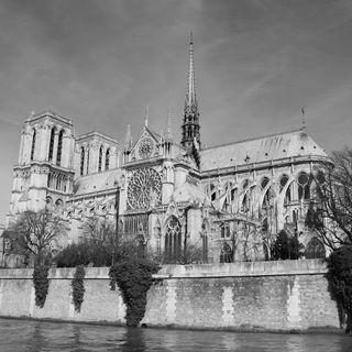 Zingara-Notre Dame de Paris