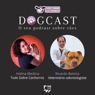 #12 - Os perigos do tártaro nos cães