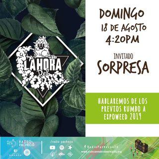 """""""Rumbo a la ExpoWeed"""" La Hora del Porro Prog 22"""
