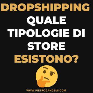 Dropshipping Italia - Quale Tipologie Di Store Esistono e quali sono le più profittevoli