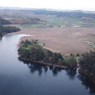 Alerta hídrica en las aguas del Biobío