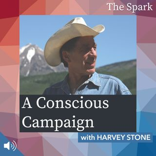 The Spark 068: A Conscious Campaign with Harvey Stone