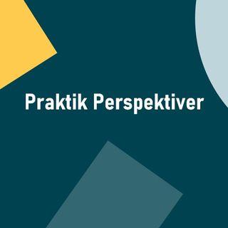 Afsnit 2 Praktik persepktiver - Hvordan for jeg et praktiksted
