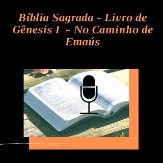 Leitura Bíblica - Livro do Gênesis Capitulo 1