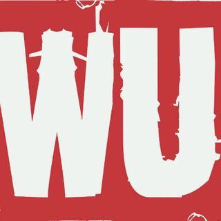Wrestling Unwrapped # 10:  WWE Wrestlemania XX