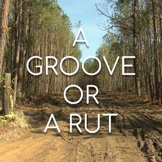 A Groove or A Rut? - Morning Manna #2852
