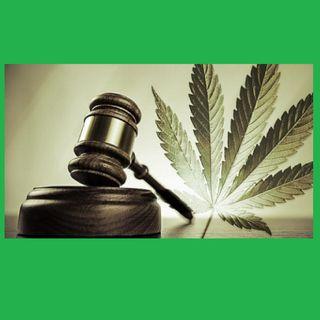 Judge Lenny Frieling takes Time 4 Hemp