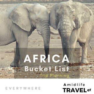 Bucket List Africa Safari Trip Advice w Nick Bratton