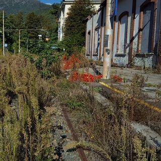 Tutto Qui - mercoledì 10 aprile - Il gruppo Rail.To non parteciperà alla gara per la Sfm torinese