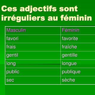 Les adjectifs irregulières au féminin