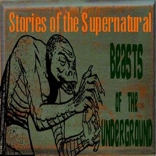 Beasts of the Underground | True or Urban Myths? | Podcast