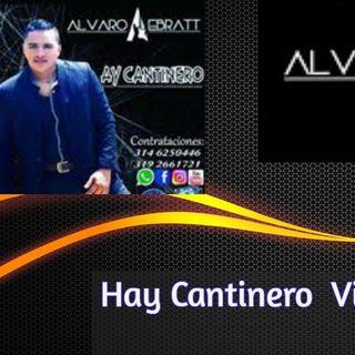 Ay Cantinero   Alvaro  Ebratt