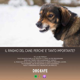 #45 - Il ringhio del cane: perchè è tanto importante?