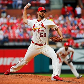 Waino is back for 2021!