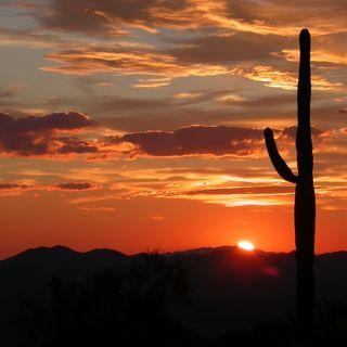 #106 - President Trump Praises Arizona in Election Audit