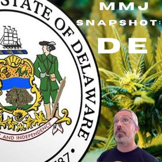 Snapshot Of America's Medical Marijuana Markets: Delaware