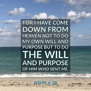 God has a plan and purpose for you that he made you uniquely carry out.