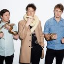 The Wombats and Their Guitar-Drenched Pop Take Wing