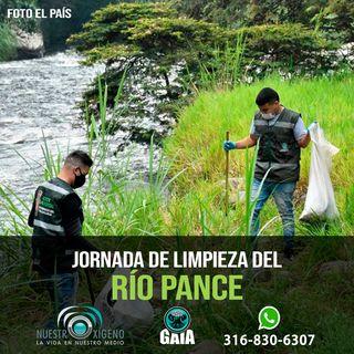 NUESTRO OXÍGENO Jornada limpieza del río Pance