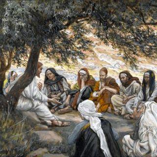 """""""Servire il cielo e i fratelli, è gustare la Rugiada dell'Amore di Dio""""😇🙏🏻💪🏻"""