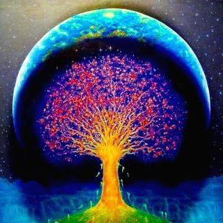 The Human Seed