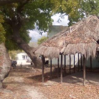 #Zambia