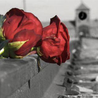La Testimonianza e la Memoria: Primo Levi, Vonnegut e Jojo Rabbit
