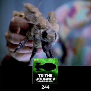 To The Journey : 244: Fur Fly Vision Quest