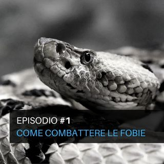 Episodio #1 - Come combattere le fobie