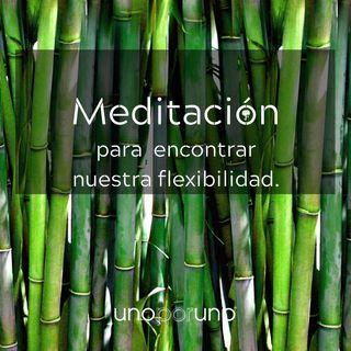 Meditación para encontrar nuestra flexibilidad