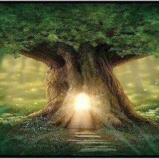 Episode 127 - Abiding Life Scripture Meditations - Psalm 119:41-48