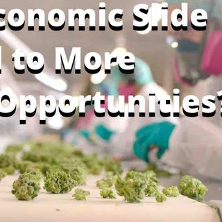 Will an Economic Slide Lead to More Cannabis Opportunities?