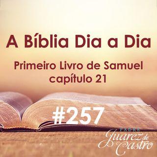 Curso Bíblico 257 - Primeiro Livro de Samuel 21 - Nova Fuga de Davi - Padre Juarez de Castro