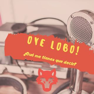 Podcast #6 || Oaxaca sin dulces / El tipo de la combi / Disny Más