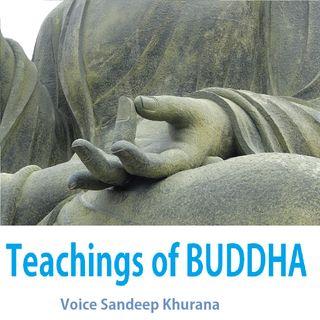 Buddhism And Its Essence